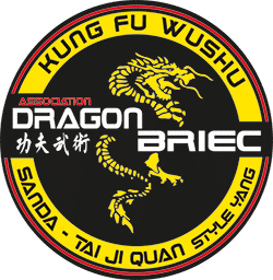 Dragon Briec